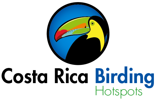 Birdwatching in Costa Rica