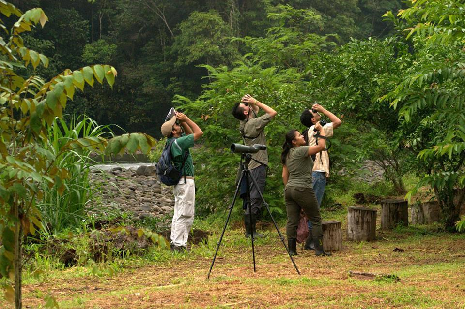 Big Day Record in Costa Rica – Birdwatching in Costa Rica